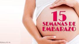 15 Semanas de Embarazo – Gestación Completa paso a paso
