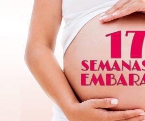 17 Semanas de Embarazo – Gestación Completa paso a paso