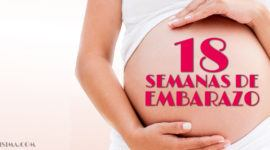 18 Semanas de Embarazo – Gestación Completa paso a paso