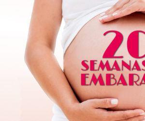 20 Semanas de Embarazo – Gestación Completa paso a paso