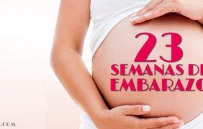 23 Semanas de Embarazo – Gestación Completa paso a paso