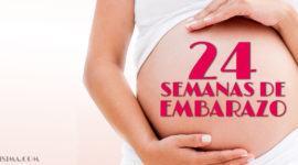 24 Semanas de Embarazo – Gestación Completa paso a paso