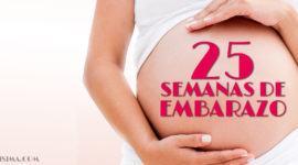 25 Semanas de Embarazo – Gestación Completa paso a paso