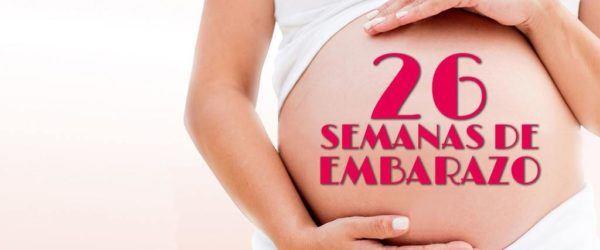 26 Semanas de Embarazo – Gestación Completa paso a paso