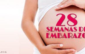 28 Semanas de Embarazo – Gestación Completa paso a paso
