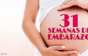 31 Semanas de Embarazo – Gestación Completa paso a paso