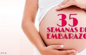 35 Semanas de Embarazo – Gestación Completa paso a paso