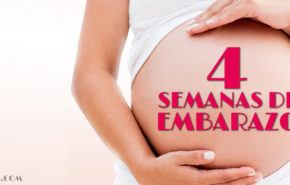 4 Semanas de Embarazo – Gestación Completa paso a paso