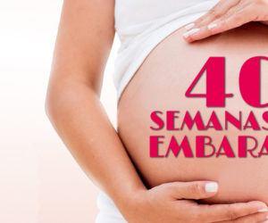 40 Semanas de Embarazo – Gestación Completa paso a paso