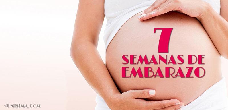 7 semanas de embarazo
