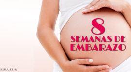 8 Semanas de Embarazo – Gestación Completa paso a paso