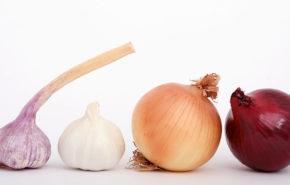 Ajo y Cebolla – ¡Combinación Perfecta para su Salud!