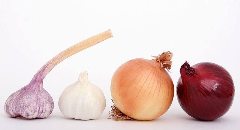 Ajo y cebolla para la salud