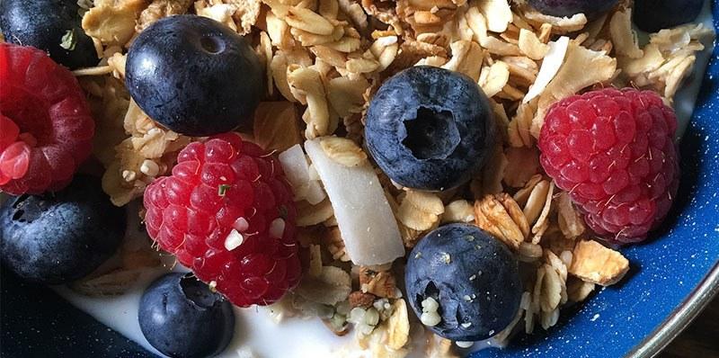avena en desayuno con frutos rojos