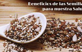 """Beneficios de las 7 """"Semillas Mágicas"""" para la Salud"""