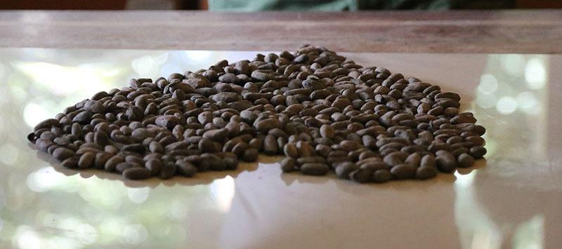 café afecta al corazón