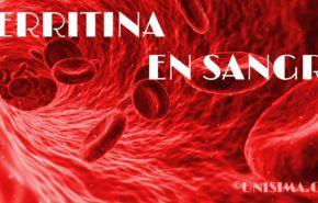 Comprender la Ferritina ¿Cómo son tus reservas de hierro en sangre?