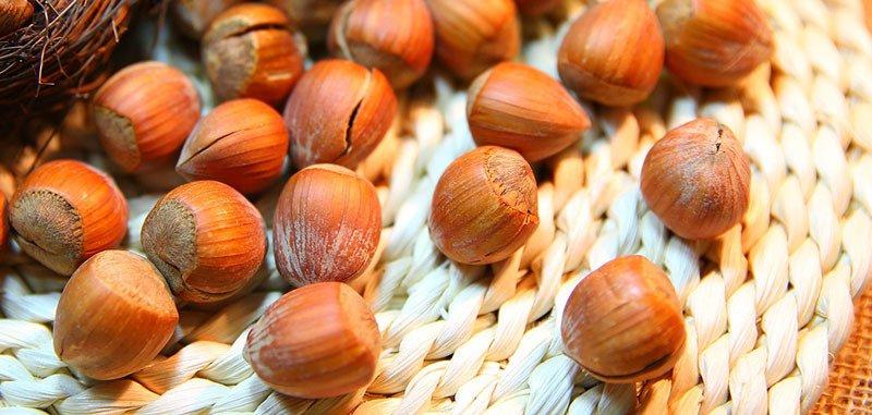 Tipo de Fruto seco: Avellanas