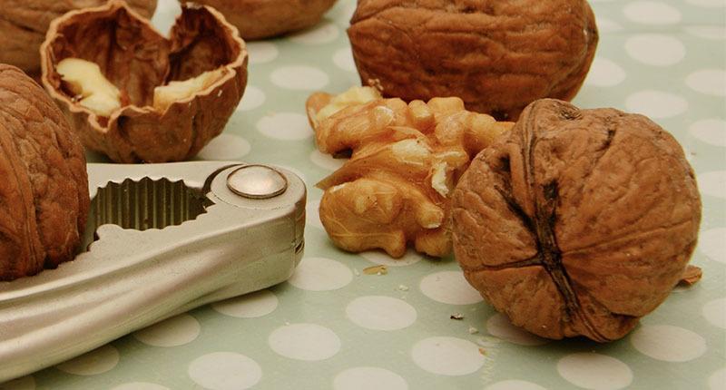 Tipo de Fruto seco: Nueces
