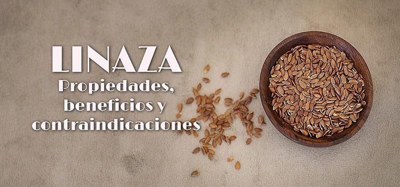 Linaza: Beneficios, propiedades y contraindicaciones