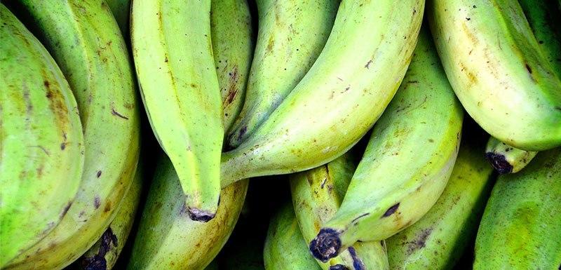 plátanos verdes sueltos