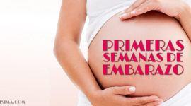 Primeras semanas del embarazo: de la 1ª al 3era – Gestación Completa paso a paso