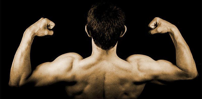 Querer ganar masa muscular