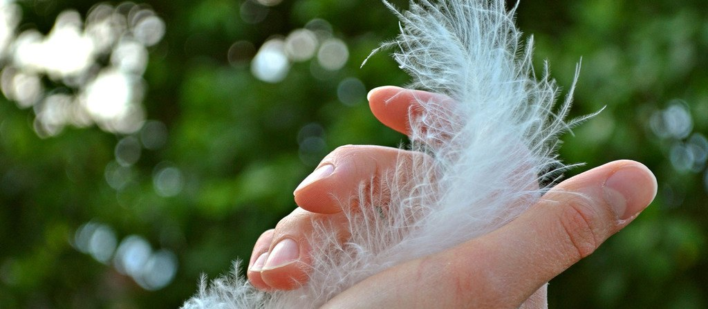 Tienes uñas débiles o quebradizas? ¿Sabes qué hacer? - Unisima.com