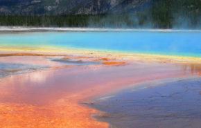 La verdad detrás del Aceite Mineral en los Cosméticos