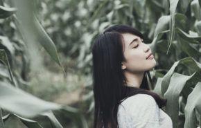 16 Mejores Aceites Vegetales para la Belleza de los Cabellos y la Piel
