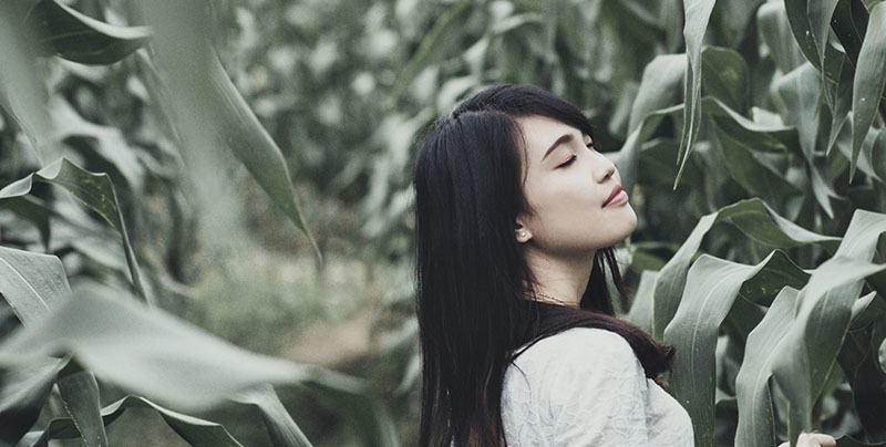 Aceites vegetales para la belleza del cabello y la piel