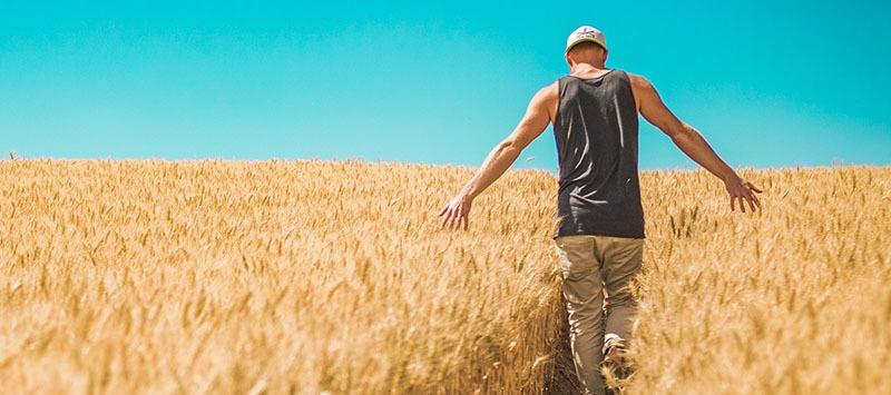 Beneficios del arroz integral en nuestra salud