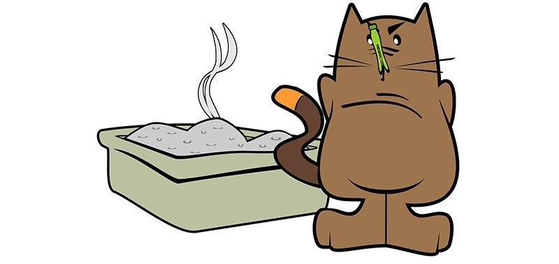 bicarbonato quitar olor arenero gatos