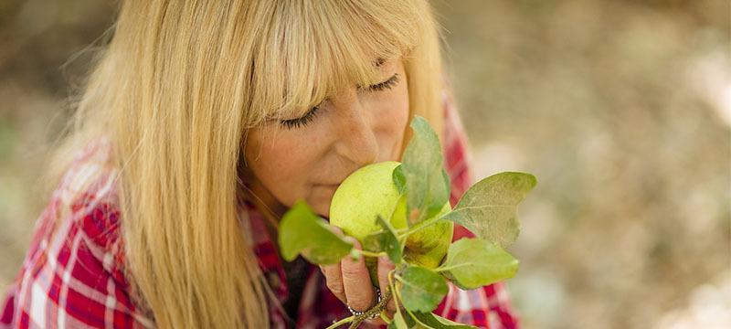 Dieta para mejorar los síntomas de la menopausia