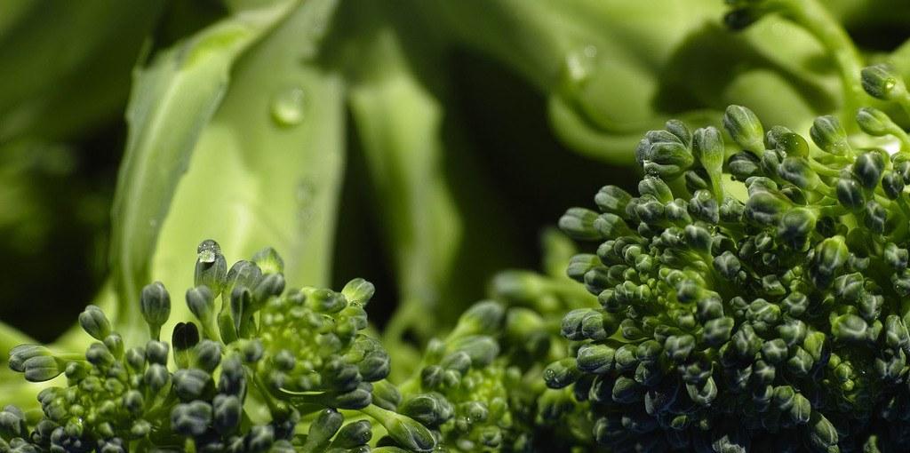 Cómo elegir el brócoli fresco
