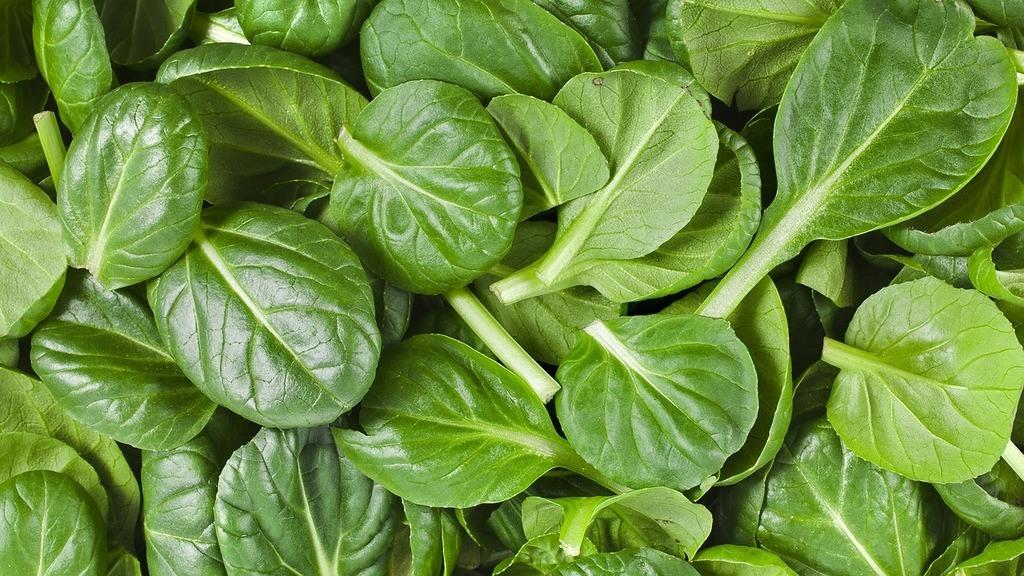 Hojas verdes: espinacas
