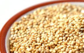 Quinoa: Contraindicaciones, Beneficios, Propiedades y como incluirla en nuestra Dieta