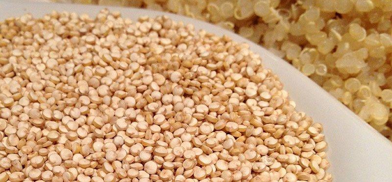 Quinoa cruda y quinoa cocida