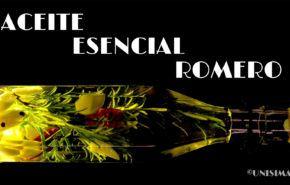 Aceite Esencial de Romero: Contraindicaciones, Beneficios y para la Pérdida de Cabello