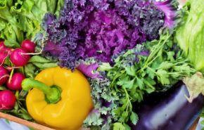 Alimentos orgánicos: Distínguelos, eliminar pesticidas, desventajas y por qué comerlos