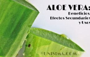 Aloe Vera: Efectos Secundarios, Beneficios, Composición y Usos