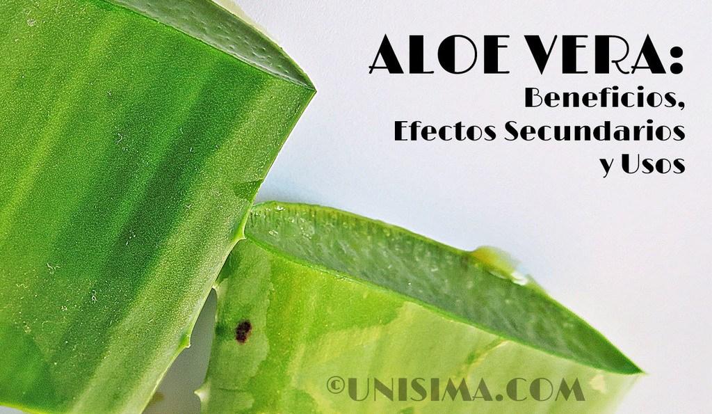 Aloe vera Beneficios y Efectos Secundarios