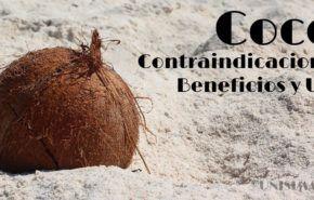 Coco: Contraindicaciones, Beneficios y cómo Tomarlo