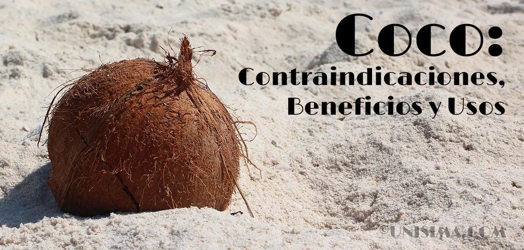 Coco beneficios para la salud