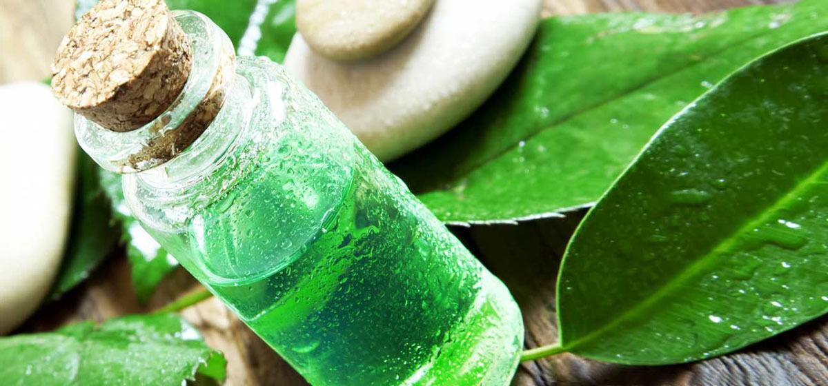 Aceite Esencial de Árbol de Té Melaleuca