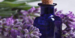 Aceite Esencial de Lavanda: Contraindicaciones, Efectos Secundarios