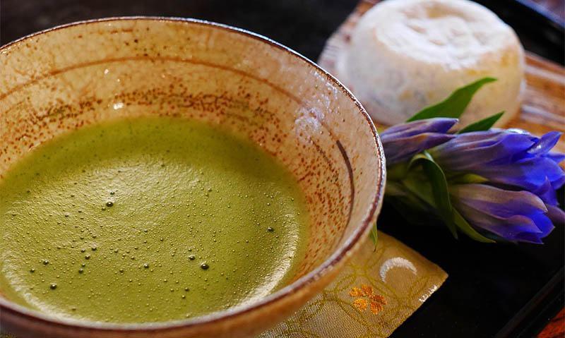 Té Matcha Verde Japonés con L-teanina