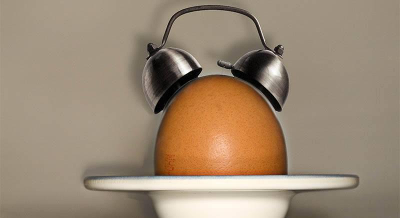 Huevo rico en minerales