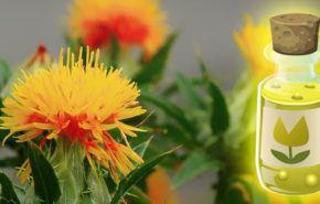 Aceite de cártamo: Efectos secundarios, Beneficios, Tipos y propiedades