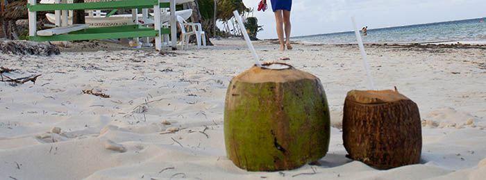 Agua de coco natural o procesado